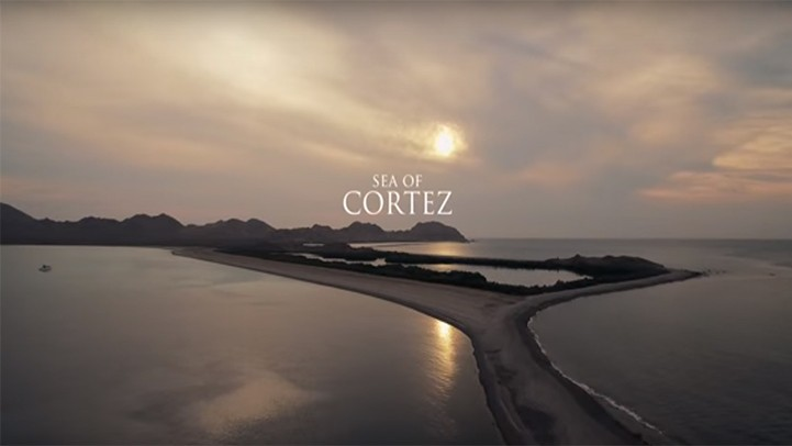 [VIDEO] Sea of Cortez: The World's Aquarium