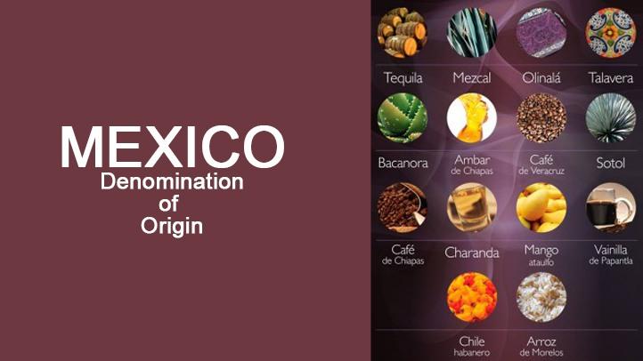 Mexico-Denomination-of-Origin-PIMSA-Industrial-Parks-in-Mexico.jpg