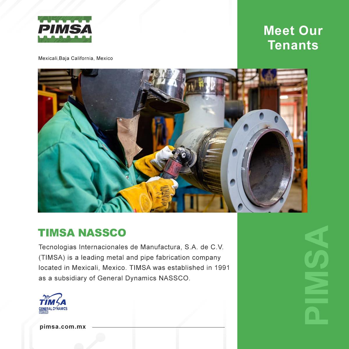 Pimsa_TIMSA2020.jpg